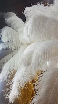 화장 거울 옆에 있는 금색 탁자에 장식용 타조 깃털.