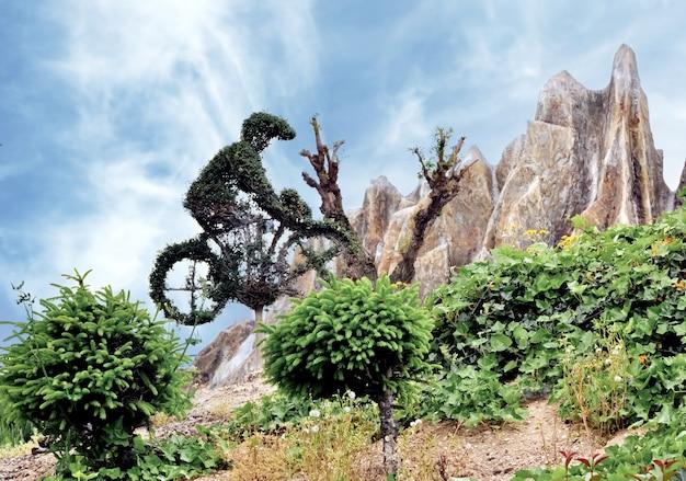 石と空の表面にサイクリストの形をした植物の装飾的な屋外の構成