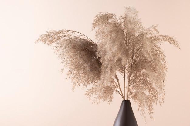 Декоративная пампасная трава, камыши в вазе на светлом пастельном фоне.