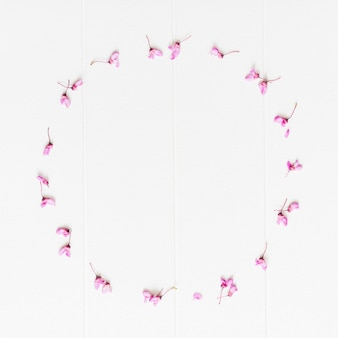 Decorative petals flowers in a circular shape Free Photo