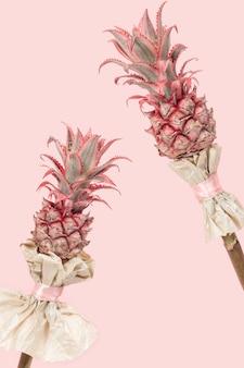 Декоративный розовый ананас, растение бромелиада ananas bracteatus.