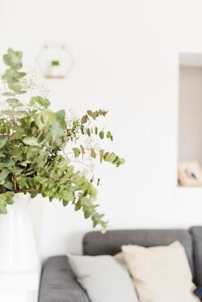 집에 장식 식물과 꽃