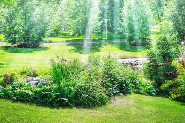 公園の芝生の間で装飾的な植物の花壇。太陽の光。