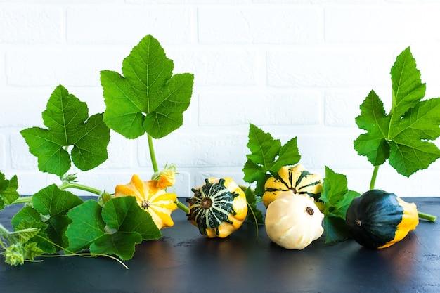 Декоративные тыквы с листьями на фоне белой кирпичной стены. осеннее украшение.