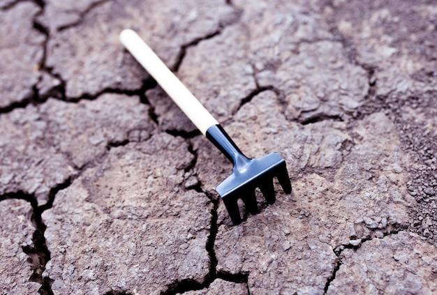 마른 땅에 장식 갈퀴입니다.