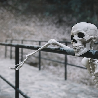 Decorative skeleton resting on parapet and looking away