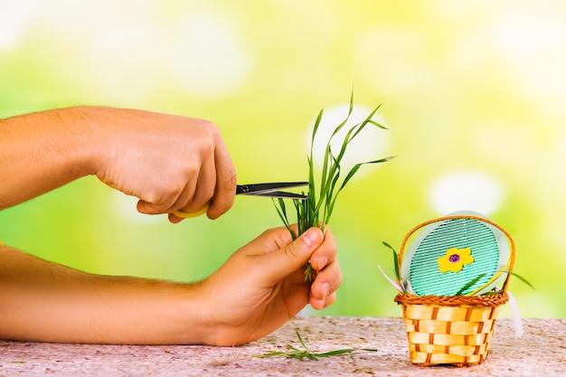 草の巣の手作りのカラフルな卵と自然な新鮮な緑の草を切る男性の手で装飾的な小さなバスケット