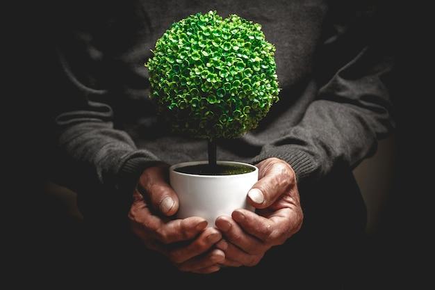 老人の手で鍋に装飾的な木