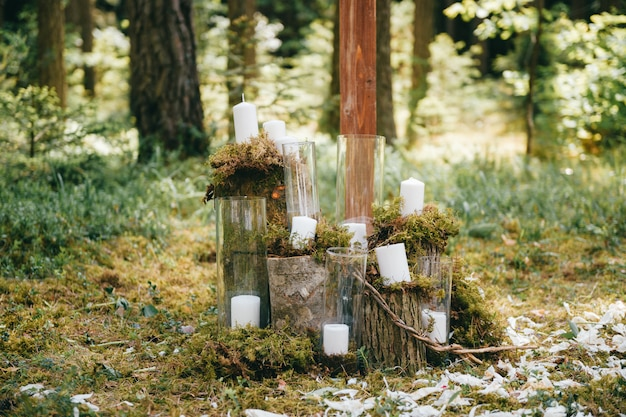 Декоративные свечи в очках стоят в солнечном лесу