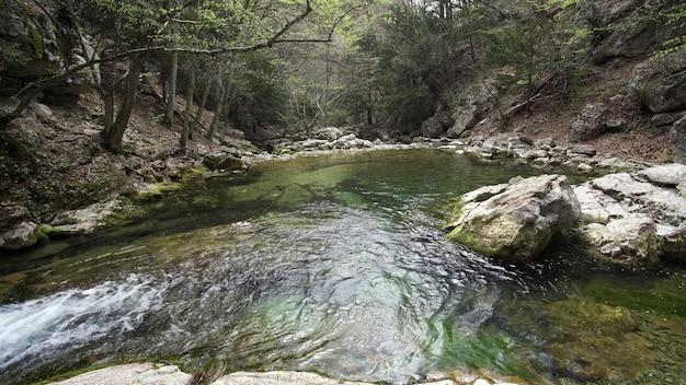 石の間の深い川。鬱蒼とした森の美しさ。磯。文明からは程遠い。 4k uhd