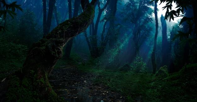 Глубокие тропические джунгли в темноте