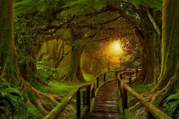 Глубокие тропические джунгли юго-восточной азии