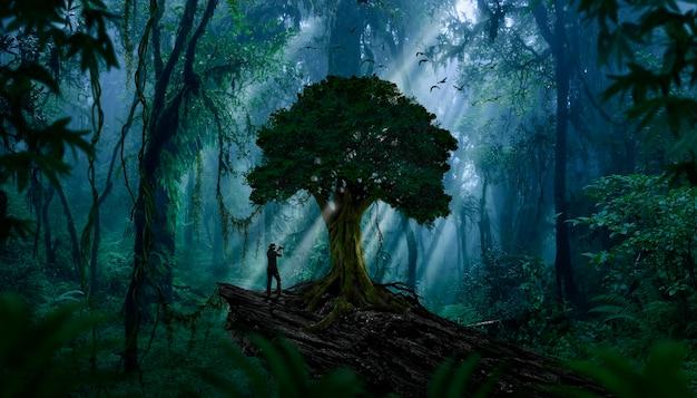 Глубокие тропические джунгли юго-восточной азии в августе