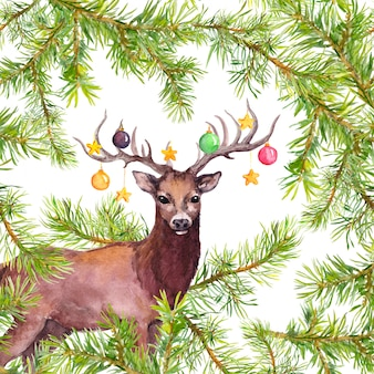 Deer animal with decorative baubles on horns. christmas watercolor card with pine tree branches