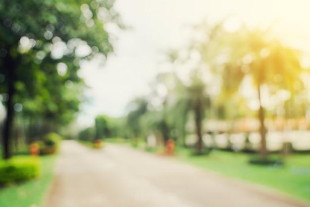 빈티지 톤으로 햇빛에 정원 나무의 초점을 흐리게 하고 배경을 흐리게 합니다.