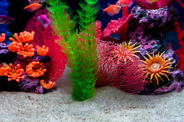 Defocused bottom of the aquarium with white sand and artificial decorations.