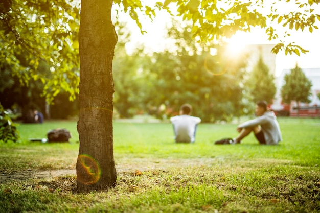 Defocused group of people sitting on the green lawn grass in the summer park on a sunset outdoor