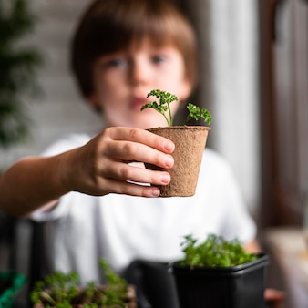 Defocused little boy holding plant in pot at home