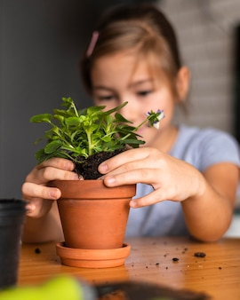 Defocused little girl planting flowers in pot at home