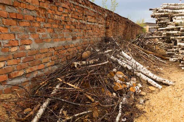 森林破壊、森林破壊。木の収穫。パイル、多くの挽かれた松と白樺の丸太のスタック。破壊されたレンガの壁。高品質の写真