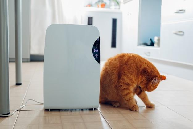 Осушитель с сенсорной панелью, индикатор влажности, ультрафиолетовая лампа, ионизатор воздуха, емкость для воды работает дома. воздушная сушилка
