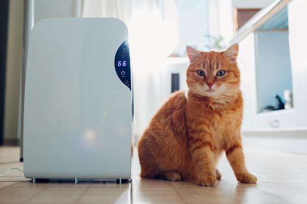 Осушитель с сенсорной панелью, индикатором влажности, ультрафиолетовой лампой, ионизатором воздуха, емкостью для воды работает дома. воздушная сушилка