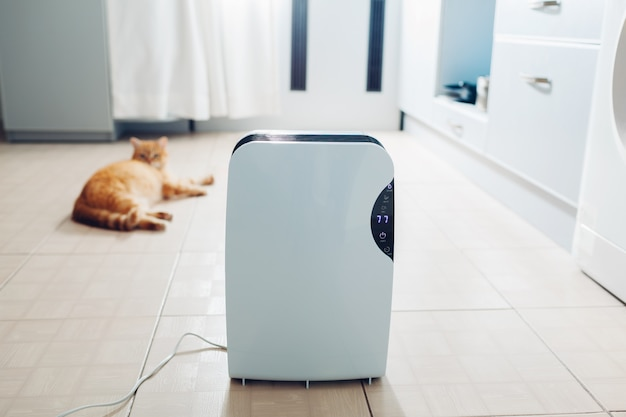 Dehumidifier with touch panel, humidity indicator