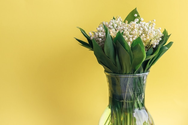 Delicate bouquet of white lilies of the valley in green leaves in a glass vase on a bright yellow background with copy space.