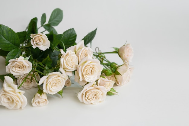 Delicate bouquet of white roses on light background