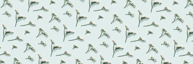 섬세한 마른 꽃, 흰 꽃, 식물 표본 상자를 닫습니다. 자연 꽃 패턴, 파스텔 컬러, 추상 자연