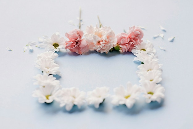 Delicate flowers arranged in square shape on blue background