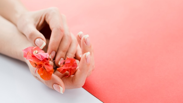Delicate hands holding red flowers with copyspace