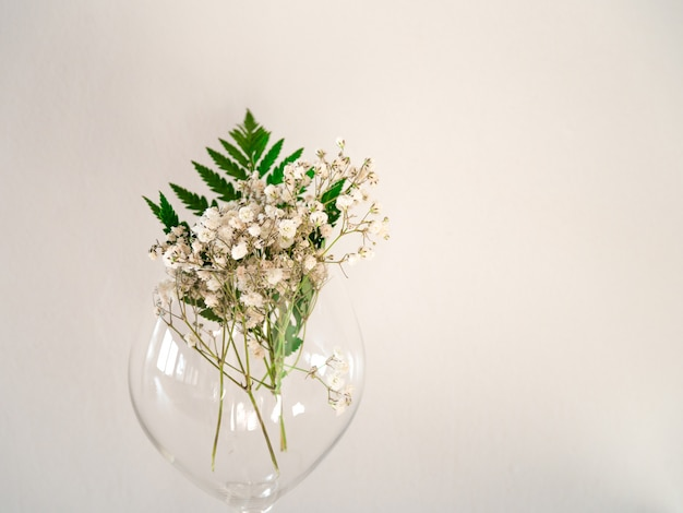 Delicate little white flowers on white background from front. gypsophila on glass with leaf of fern