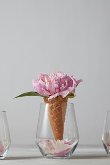 회색 돌 탁자에 꽃잎이 서 있는 유리에 있는 웨이퍼 콘에 섬세한 분홍색 모란 꽃, 복사 공간. 평면도. 어머니의 날 축하의 개념