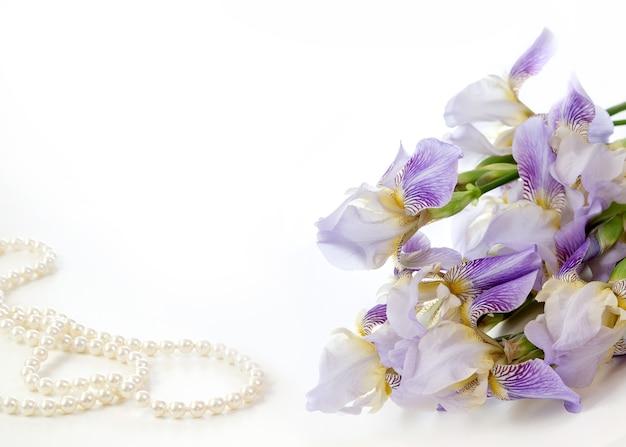 Нежный фиолетовый ирис на белом фоне. цветы для любимой