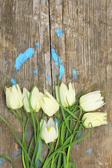 ひびの入った古い木の板の上に繊細な白い花