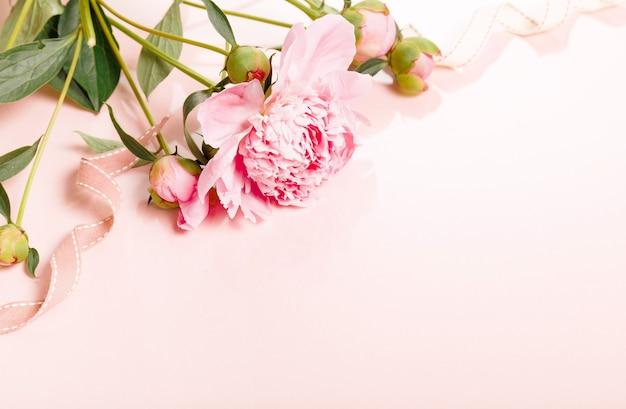 花びらの花と木の板に白いリボンが付いた繊細な白ピンクの牡丹。俯瞰上面図、フラットレイ。スペースをコピーします。誕生日、母、バレンタイン、女性、結婚式の日のコンセプト。