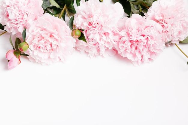 흰색 바탕에 꽃잎 꽃이 있는 섬세한 흰색 분홍색 모란. 오버 헤드 평면도, 평면 누워. 공간을 복사합니다. 생일, 어머니, 발렌타인, 여성, 결혼식 날 컨셉입니다.