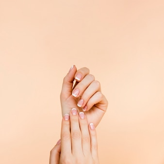 Delicate woman's hands with copy space