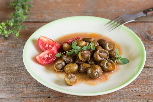 Delicious apulian snails called munaceddi with tomato sauce, oregano on a wooden table,