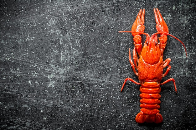 Delicious boiled crayfish on black rustic table
