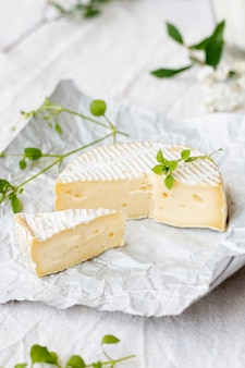 Delicious brie cheese with close-up