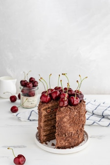 Delicious chocolate cake decorated with cherries, copy space