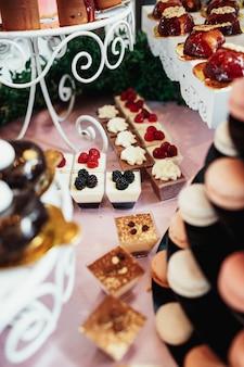 Deliziosi biscotti al cioccolato serviti sul piatto
