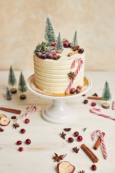 Delicious christmas cake decorated with fir trees