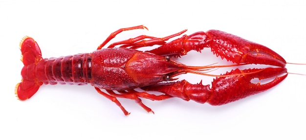 Delicious crayfish