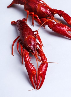 Delicious crayfishes