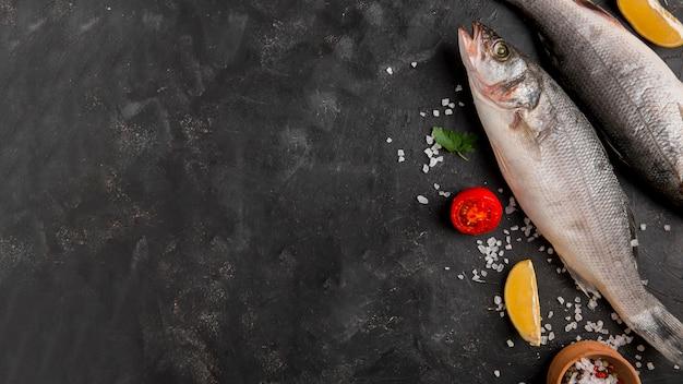 Delizioso spazio copia pesce fresco