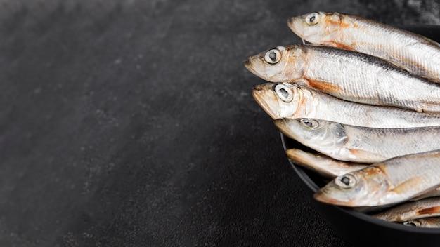 お皿に盛り付けた新鮮な魚
