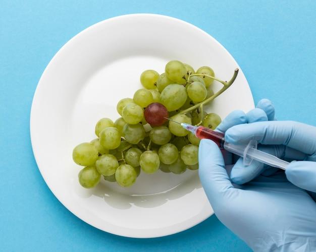 Alimento modificato ogm dell'uva deliziosa